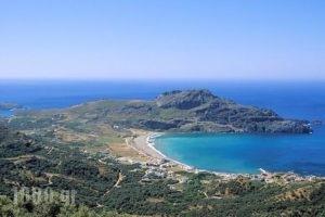 Morpheas Apartments_best prices_in_Apartment_Crete_Rethymnon_Plakias