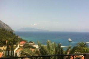 Giannatos' Studios_travel_packages_in_Ionian Islands_Kefalonia_Vlachata