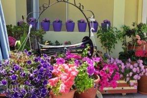 Missiria Apartments_best deals_Apartment_Crete_Rethymnon_Rethymnon City