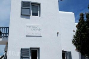 Studio Ornos_holidays_in_Hotel_Cyclades Islands_Mykonos_Mykonos ora