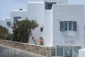 Studio Ornos_accommodation_in_Hotel_Cyclades Islands_Mykonos_Mykonos ora