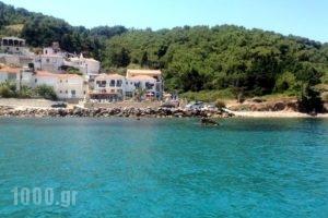 Villa Violetta_holidays_in_Villa_Aegean Islands_Samos_Karlovasi