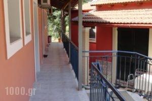 Stamatela Studios_holidays_in_Hotel_Ionian Islands_Corfu_Palaeokastritsa