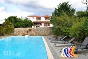 Kamelia Villas_holidays_in_Villa_Sporades Islands_Skopelos_Panormos