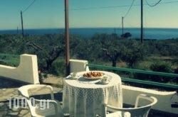 Studios Crete in Ierapetra, Lasithi, Crete