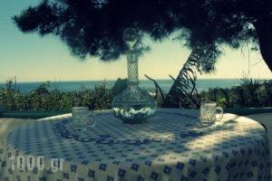Studios Crete_lowest prices_in_Hotel_Crete_Lasithi_Ierapetra