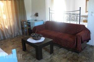 Studios Crete_best deals_Hotel_Crete_Lasithi_Ierapetra