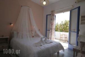 Pension'Sofia_holidays_in_Hotel_Cyclades Islands_Paros_Paros Chora
