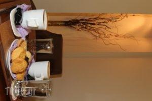 Hotel Athina_best deals_Hotel_Central Greece_Fthiotida_Lamia