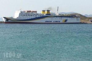 Agnadi Studios_best prices_in_Hotel_Piraeus Islands - Trizonia_Kithira_Kithira Chora