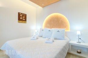 William'S Houses_lowest prices_in_Hotel_Cyclades Islands_Sandorini_Sandorini Chora