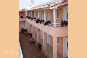 Perdika Suites_best prices_in_Hotel_Piraeus Islands - Trizonia_Aigina_Perdika