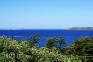 Oskars Studios_holidays_in_Hotel_Ionian Islands_Kefalonia_Argostoli