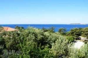 Oskars Studios_best deals_Hotel_Ionian Islands_Kefalonia_Argostoli