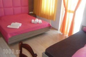 Hotel White Rose Beach_holidays_in_Hotel_Macedonia_Pieria_Olympiaki Akti