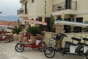 Epavlis Boutique_accommodation_in_Hotel_Central Greece_Fokida_Galaxidi