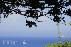 Villa Eliza_accommodation_in_Villa_Ionian Islands_Kefalonia_Kefalonia'st Areas