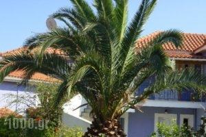 Villa Eliza_lowest prices_in_Villa_Ionian Islands_Kefalonia_Kefalonia'st Areas