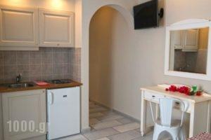 Vasiliki Studios_best prices_in_Hotel_Cyclades Islands_Naxos_Naxos chora