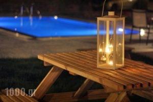 Zeus'S Daughtes Villas_accommodation_in_Villa_Crete_Heraklion_Tymbaki