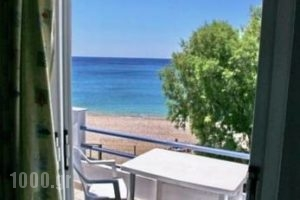 Pano Sto Kyma_accommodation_in_Hotel_Aegean Islands_Lesvos_Plomari