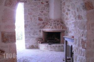 Climati Studios_holidays_in_Hotel_Ionian Islands_Zakinthos_Zakinthos Rest Areas