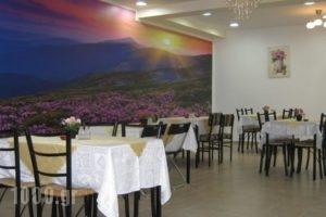 Iokasof Rooms_holidays_in_Room_Epirus_Ioannina_Ioannina City