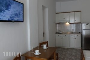 Loginos Studios_best deals_Hotel_Macedonia_Halkidiki_Kassandreia