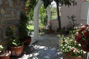 Loginos Studios_travel_packages_in_Macedonia_Halkidiki_Kassandreia