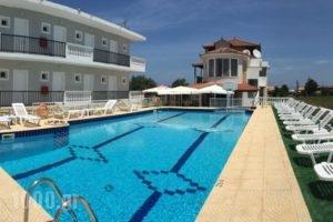 Athina Studios_accommodation_in_Hotel_Ionian Islands_Zakinthos_Zakinthos Chora