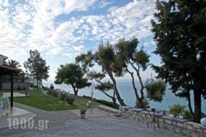 Apollo Apartments & Studios_travel_packages_in_Macedonia_Halkidiki_Kassandreia