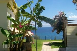 Panorama Beach_best prices_in_Hotel_Thessaly_Magnesia_Pilio Area