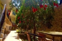 Golden View Studios in Thasos Chora, Thasos, Aegean Islands