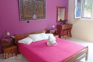 Anchor Studios_holidays_in_Hotel_Ionian Islands_Kefalonia_Kefalonia'st Areas