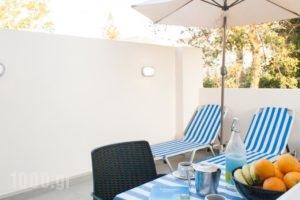 Miramare Apartments_lowest prices_in_Apartment_Crete_Chania_Platanias