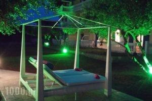 Elaias Gi Residence_travel_packages_in_Ionian Islands_Kefalonia_Argostoli