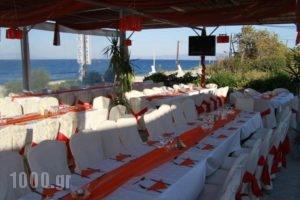 Lasia Hotel_holidays_in_Hotel_Aegean Islands_Lesvos_Plomari