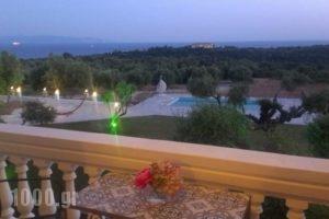 Elaias Gi Residence_accommodation_in_Hotel_Ionian Islands_Kefalonia_Argostoli