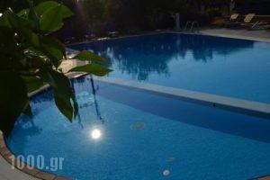 Elanios Zeus_lowest prices_in_Hotel_Macedonia_Thessaloniki_Thessaloniki City