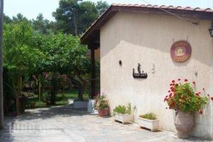 Joanna'S Studios_travel_packages_in_Ionian Islands_Kefalonia_Argostoli