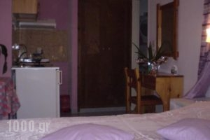 Studios Irineos_lowest prices_in_Hotel_Cyclades Islands_Sandorini_Perissa