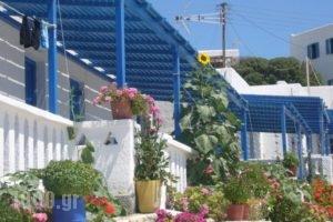 Iliovasilema Studios_lowest prices_in_Hotel_Cyclades Islands_Koufonisia_Koufonisi Rest Areas