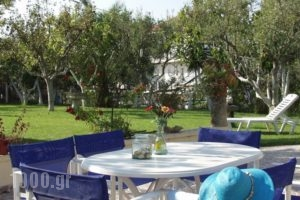 Kontonis Studios_holidays_in_Hotel_Ionian Islands_Zakinthos_Zakinthos Rest Areas