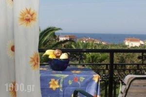 Kontonis Studios_best deals_Hotel_Ionian Islands_Zakinthos_Zakinthos Rest Areas
