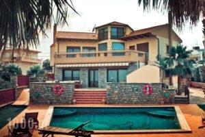 Villa St. Nicolas & Theano_travel_packages_in_Crete_Lasithi_Aghios Nikolaos