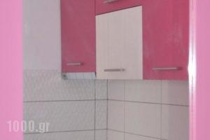 Studios Soula_lowest prices_in_Hotel_Sporades Islands_Skopelos_Skopelos Chora
