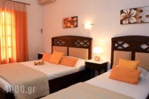 Maria Studios_accommodation_in_Hotel_Sporades Islands_Skopelos_Neo Klima - Elios