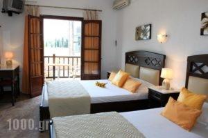 Maria Studios_best prices_in_Hotel_Sporades Islands_Skopelos_Neo Klima - Elios