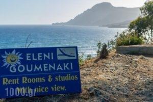 Eleni Goumenaki Plakias Studios_holidays_in_Hotel_Crete_Rethymnon_Plakias