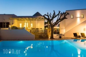 Anemomylos Residence_travel_packages_in_Cyclades Islands_Paros_Naousa